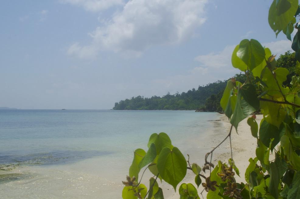Pulau Marak