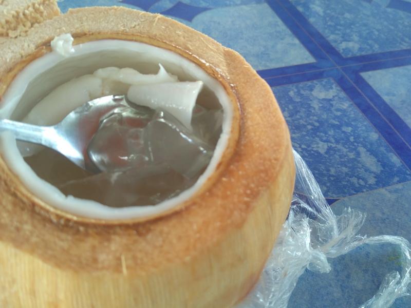 kelapa-jelly
