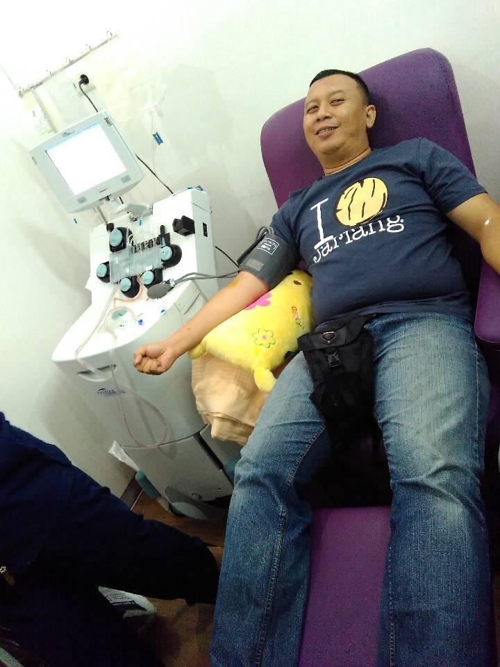 Donor darah apheresis