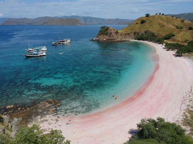 pink-beach-lombok-Destinasi Wisata Yang Menarik Untuk dikunjungi Setelah Pandemi Covid-19 Berakhir